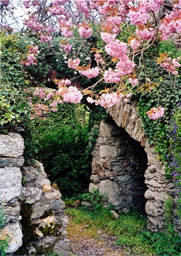 Springtime Entrance to Abbey